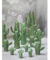 Jarrón Cactus Mini