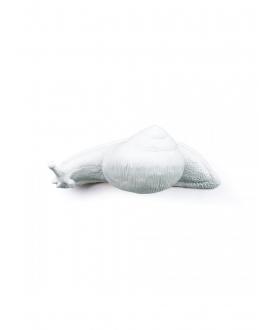 Slow Snail Hangers - Seletti