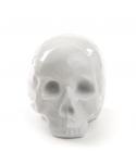 Memorabilia Collection - My Skull